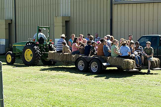 Hay Ride Fun For All Ages